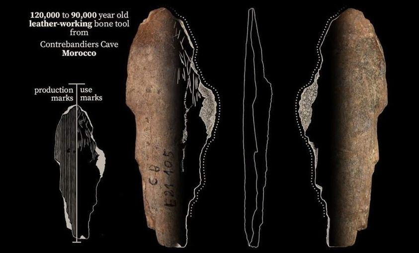 اكتشاف أقدم لباس في التاريخ بالهرهورة